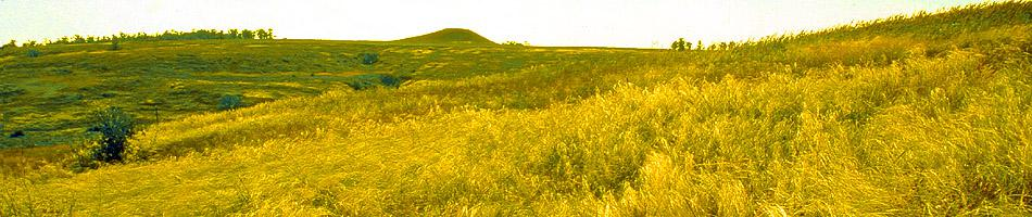 Scythian burial mound tomb - Kul in feather-grass steppe in the valley. Dairy. s.Starobogdanovka, Zaporozhye region.